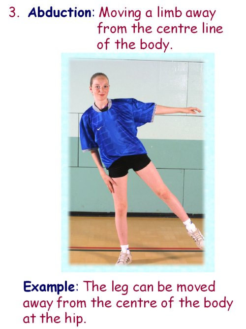 explain the relationship between physical exercise and fitness